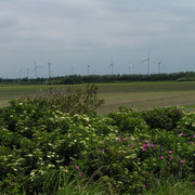 Windmills in Denmark 02