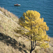 Trekking around Baikal lake 14
