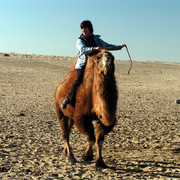 The Gobi Desert travel photos