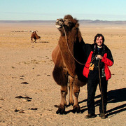 With a camel on the Gobi desert