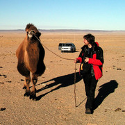 Brano trying to brake a camel :)