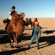 Gobi - Paula trying to brake a camel