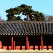 A Royal Palace in Seoul 05