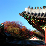 A Royal Palace in Seoul 10