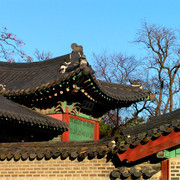 A Royal Palace in Seoul 12