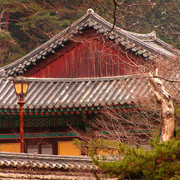 South Korea - trekking in Gyeryong-san mountain 03