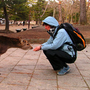 Japan - Paula with a Nara Shika deer