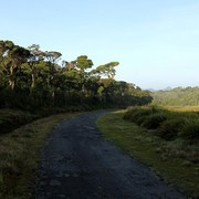 Sri Lanka - Horton Plains 004