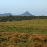Sri Lanka - Horton Plains 005
