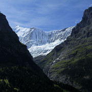 The Swiss Alps - Jungfrau Region 03