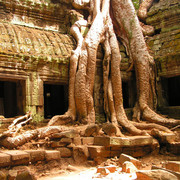 Cambodia travel photos