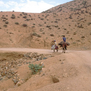 On the donkey in Marocco